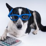 Rodney Williams' Under-Utilized Pet Tax Deductions